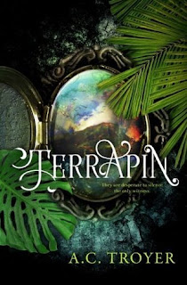 Young adult fantasy novel by author A.C. Troyer, Terrapin!