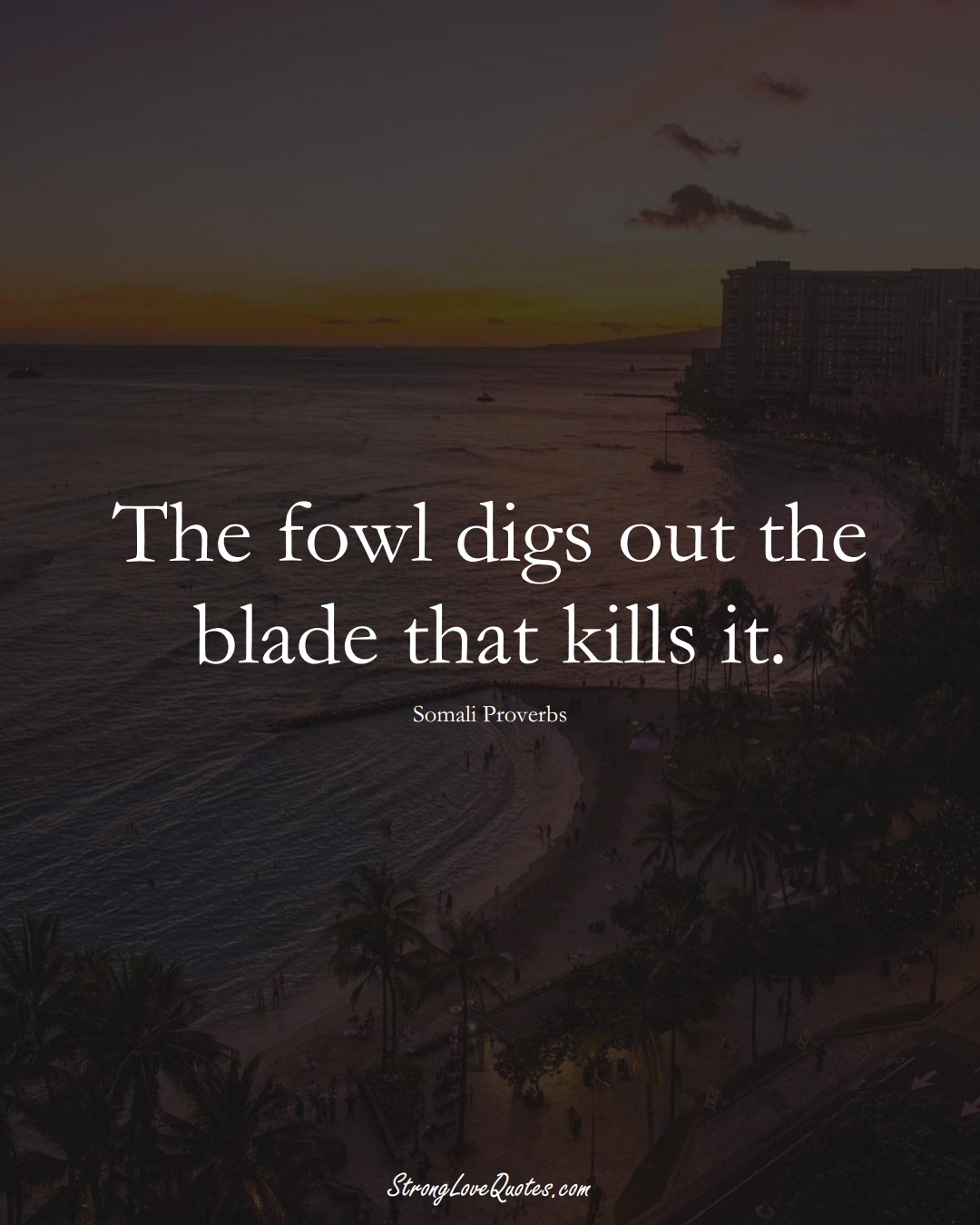 The fowl digs out the blade that kills it. (Somali Sayings);  #AfricanSayings
