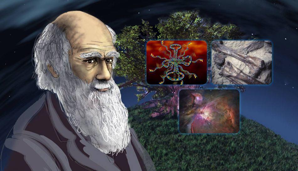 A Evolução humana não veio de origem macaco