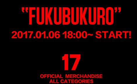 Fukubukuro 2017