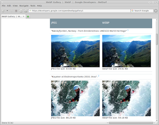 Google webp library gallery rendered in NetSurf