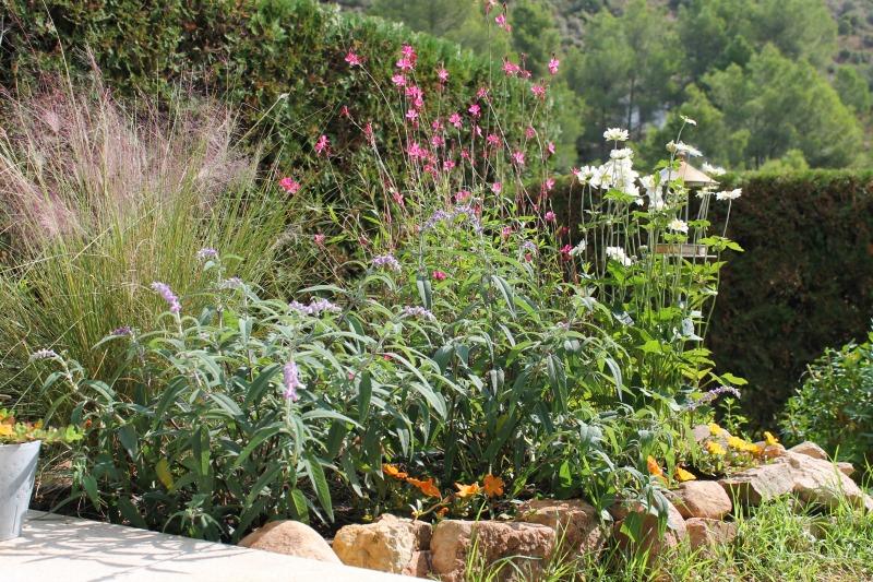 Un peque o arriate de vivaces guia de jardin - Arriate jardin ...