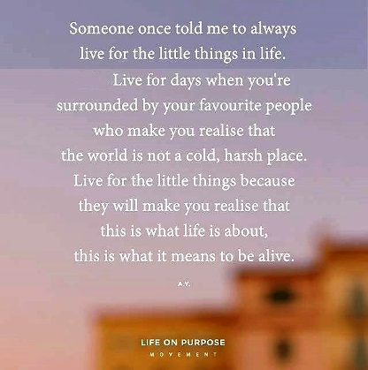 Live for the little things in life because it's the little things that really are what's important. #lifequotes