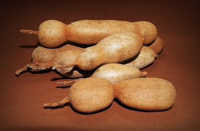 how to pronounce tamarind in English