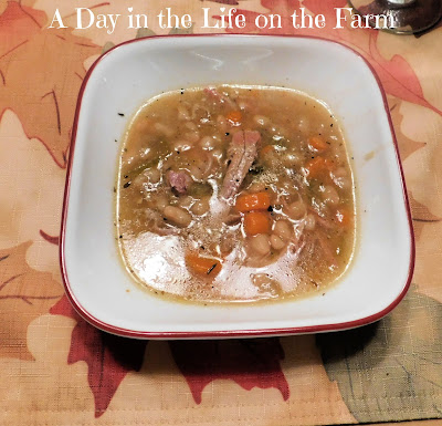 Instant Pot Smoked Turkey and Navy Bean Soup