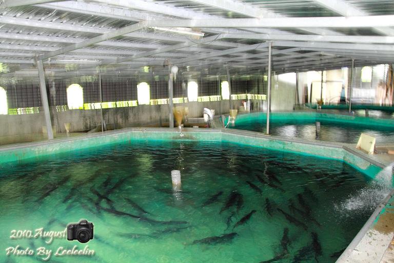 千戶傳奇生態農場
