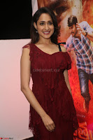 Pragya Jaiswal in Stunnign Deep neck Designer Maroon Dress at Nakshatram music launch ~ CelebesNext Celebrities Galleries 052.JPG