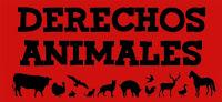 Filosofía Vegana: «Derechos Animales: Introducción Básica»