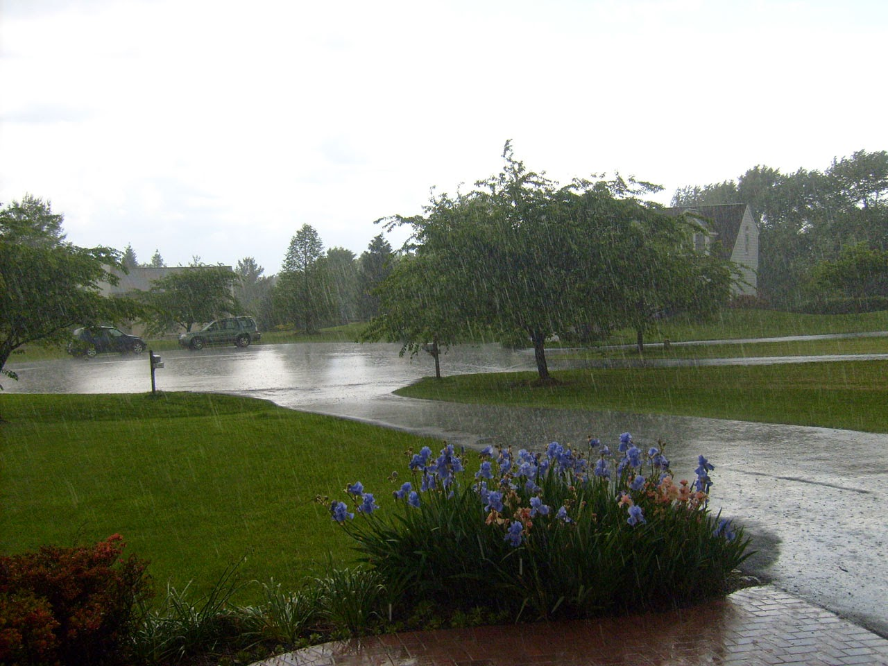 rainy season essay in urdu barsat ka mausam barish ka aik din beautiful day of rain