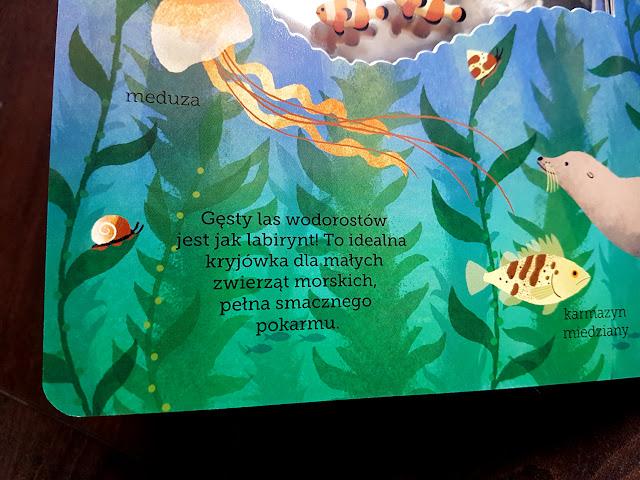 Akademia Mądrego Dziecka. Odkryj przyrodę. -  W oceanie - Na farmie - W Arktyce - Egmont Edukacyjny - książeczki dla dzieci - książeczki z okienkami