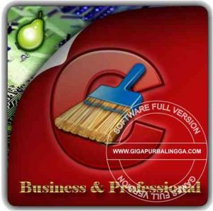 CCleaner Professional 5.61.7392 Final Full Version