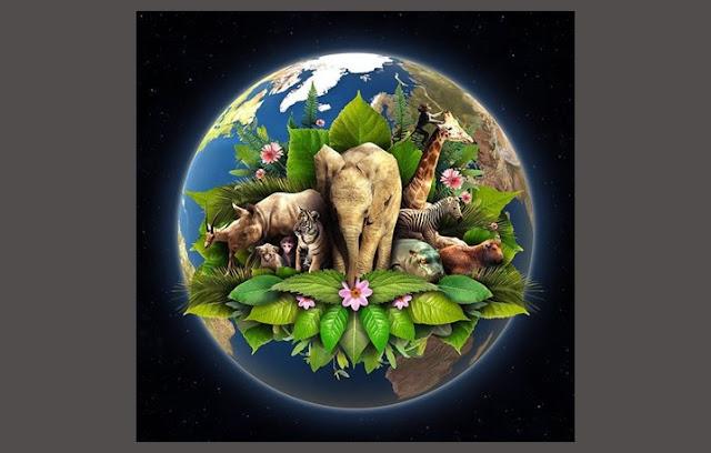 Kehidupan di Bumi