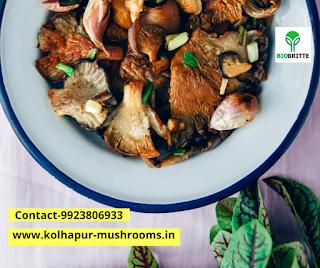 Online mushroom cultivation training