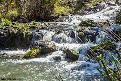 Fórum mundial da água, crise hídrica, água, água limpa, fundação grupo o boticário, projeto oasis, meio ambiente, natureza, poluição das águas, recurso hídrico, degradação ambiental, objetivos do desenvolvimento sustentável, ods, segurança hídrica