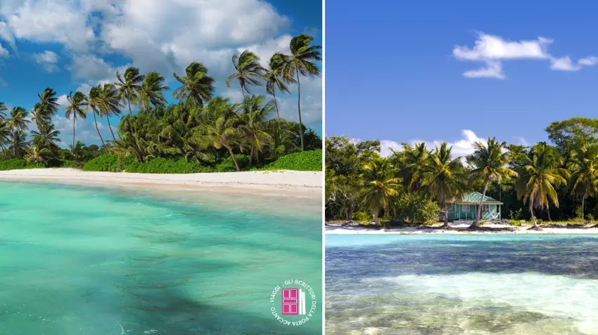 Punta Cana e l'isola di Saona