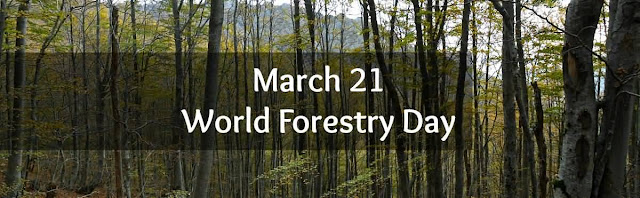 World Forest Day 2017 Card