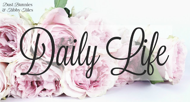 Daily Life - Dust Bunnies and Tabby Tales