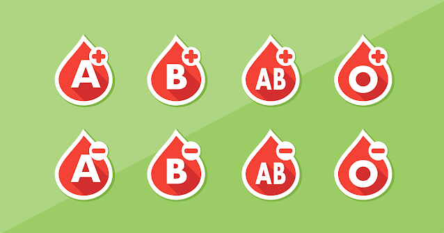 four diets for four blood types