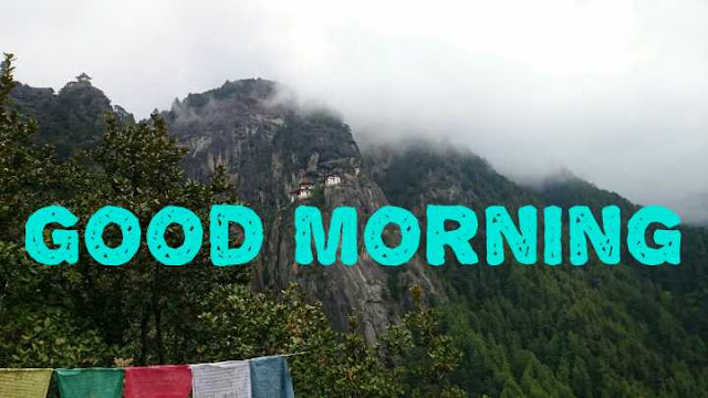 good morning, good morning status
