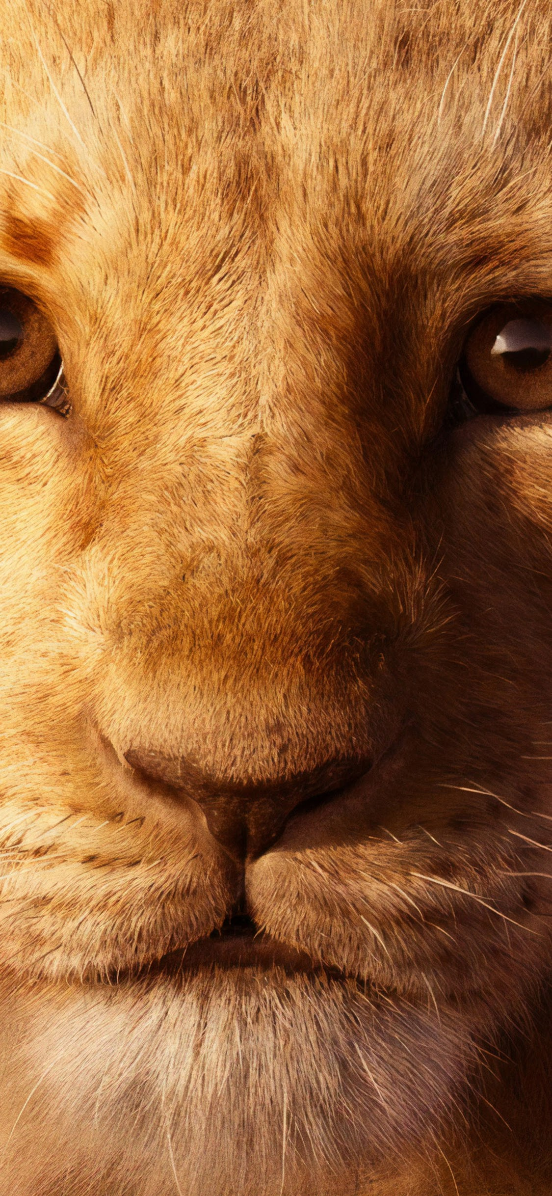 The Lion King 2019 Simba 4k Wallpaper 4
