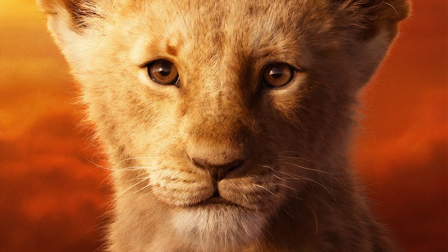 The Lion King 2019 Simba 4k Wallpaper 4