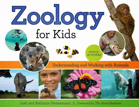 Life with Dylan: Zoology for Kids