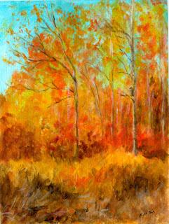 Syksyinen värikäs maisema Sorsakoskelta / Colourful autumn landscape