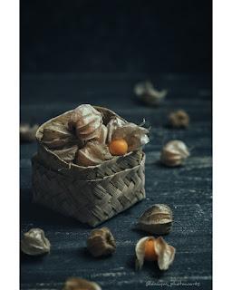 Manfaat Dahsyat Buah Ciplukan atau Golden Berry