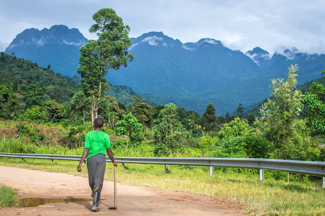 Góry Ruwenzori w Ugandzie