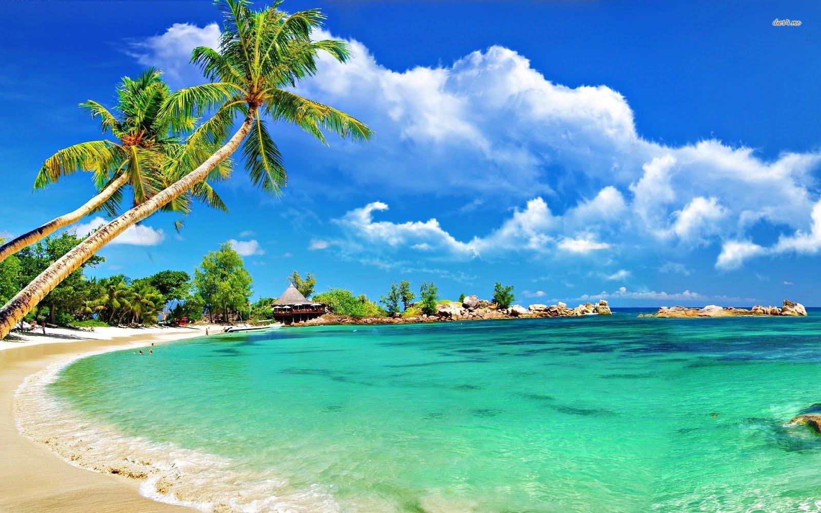 Tropical Paradise Beach Hd Wallpaper For Nexus 7 Screens: Hình Ảnh Những Bãi Biển Đẹp Nhất Thế Giới