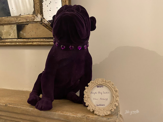 Purple Dog Suites icono