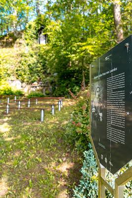 Erzquellweg - Mudersbach - Naturregion Sieg | Erlebnisweg Sieg | Natursteig-Sieg 19