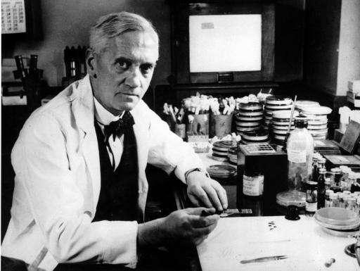 alexander fleming penicilline
