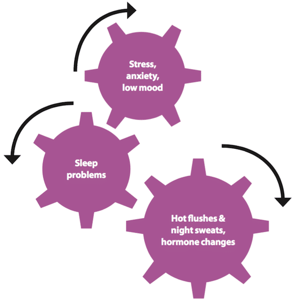 Aglycone - phương pháp tiếp cận mới giúp đánh bại rối loạn giấc ngủ tiền mãn kinh