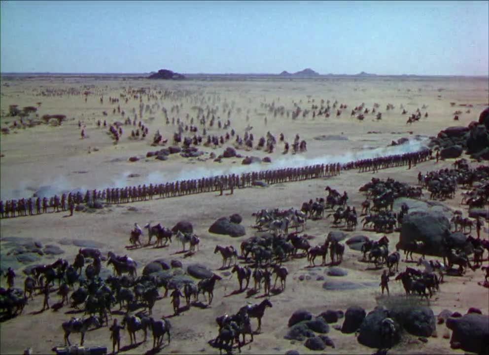 Image result for herd