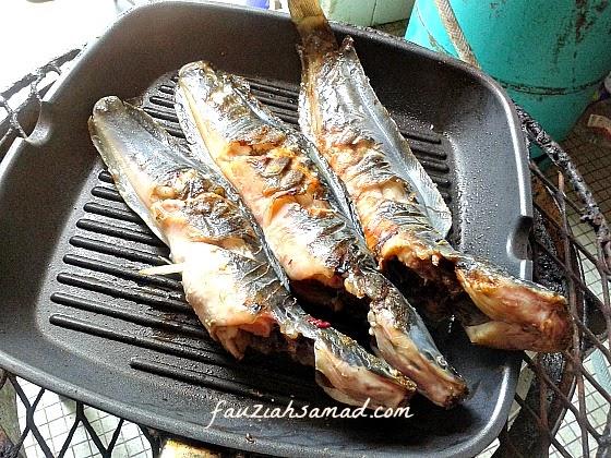 Hari Ni Kjee Grill Atau Salai Dulu Ikan Keli Sebab Nak Dapatkan Rasa Sepatutnya Atas Arang Baru Sedap Tapi Dek Kerana Dua Hujan Dan