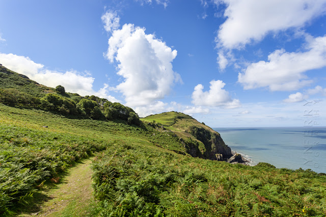 Path to Wingcliff Bay at the Valley of Rocks near Lynton by Martyn Ferry Photography