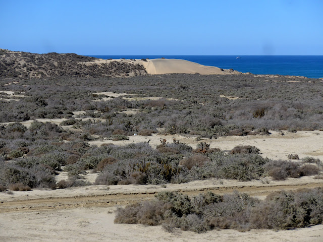 Wonderful landscape along Mex 1, Baja California, Mexico.