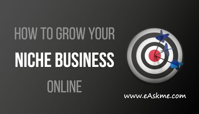 How to Grow Your Niche Business Online: eAskme