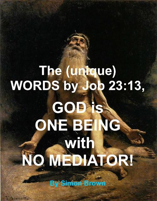 Job 23:13: