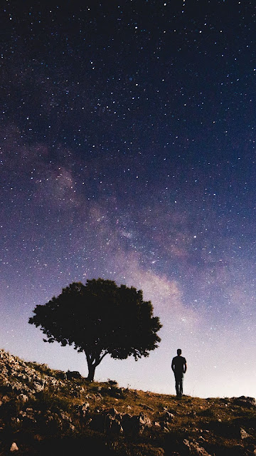 Galaxy, Galaxy, Tree, Starry Sky, Night