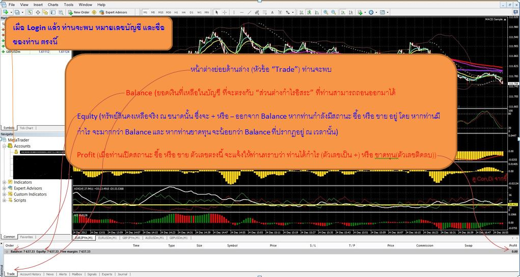 Forex megadroid members login