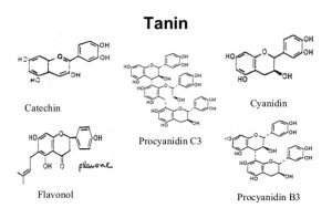 manfaat-tanin,www.healthnote25.com