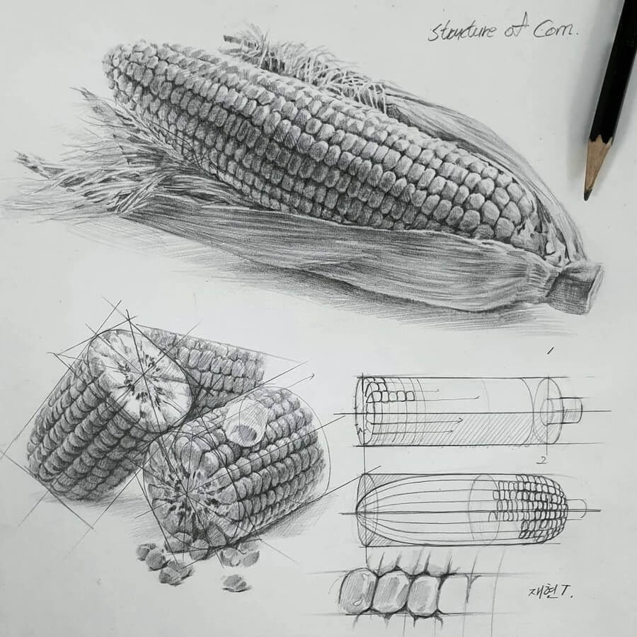 12-Sweetcorn-on-the-cob-Anjjaemi-www-designstack-co