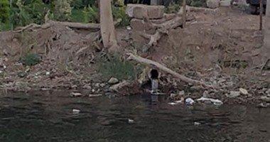 صرف بنهر النيل فى ميت غمر