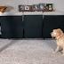Βίντεο: Όταν το κορίτσι χορεύει με τον σκύλο της...