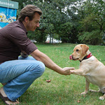 exercício com cães