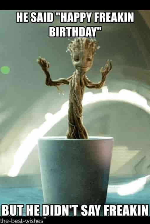 freakin groot memes for birthday