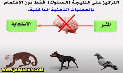 النظرية السلوكية