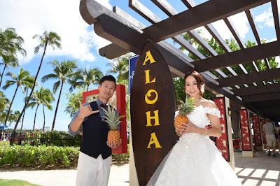 Aloha Surfboard